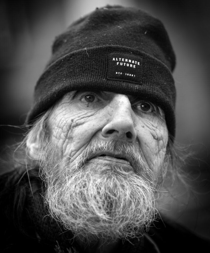 Fra hjemløse til kongelige. Svalebøg færdes hjemvant i alle samfundslag.